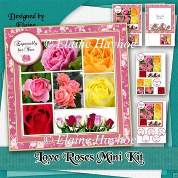 Love Roses Mini Kit