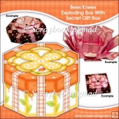 Bees Knees Exploding Box With Secret Gift Box