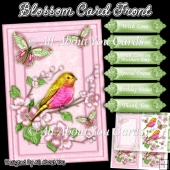 Blossom Card Front and Insert Plate