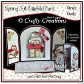 Spring Out Gatefold - Xmas Owls