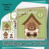 Dylan Dog Age 1-7 Cardfront Kit