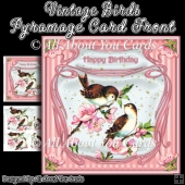 Vintage Birds Pyramage Card Front