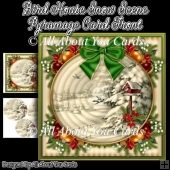 Bird House Snow Scene Pyramage Card Front
