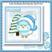Cute Christmas Bird Square Card Front