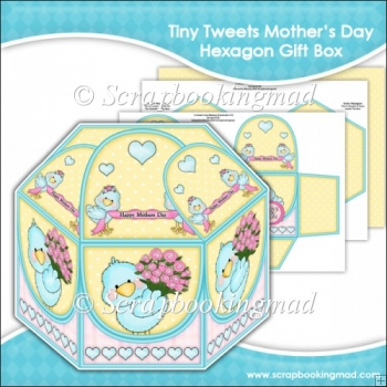 Tiny Tweets Mothers Day Hexagon Gift Box