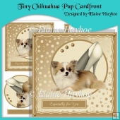 Tiny Chihuahua Pup Cardfront