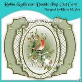 Robin Redbreast Double Pop Out Card with Envelope