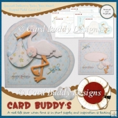 Special Delivery Baby Boy Heart Shaped Fold Card Kit