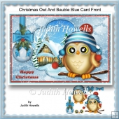 Christmas Owl And Bauble Blue Card Front