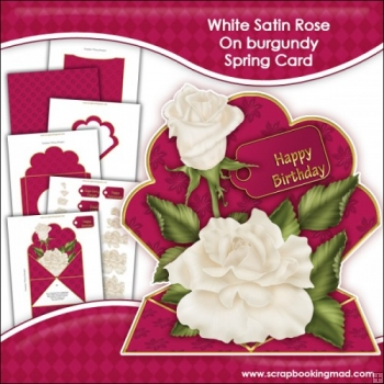White Satin Rose On Burgundy Spring Card
