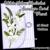 White Lilac Gladiolus Envelope Card Front