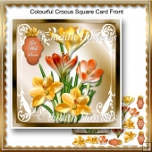 Colourful Crocus Square Card Front