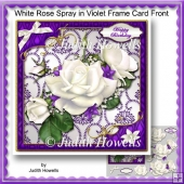 White Rose Spray In Violet Frame Card Front