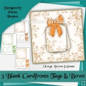 Orange Brown Green Blank Cardfronts Tags and Bows