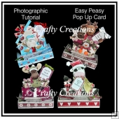 Easy Peasy Pop Up Cards - Photographic Tutorial