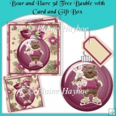 Bear and Hare 3d Tree Bauble with Card and Gift Box