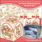 So Berry Precious Secret Treasure Box