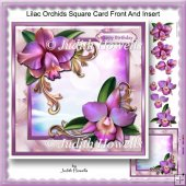 Lilac Orchids Square Card Front And Insert