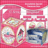 Snowbirds Secret Treasure Box