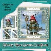 Frosty Nose Gnome Cardfront