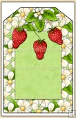 Strawberry Patch Tag - REF_T464