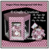 Posy Pot Gift Box