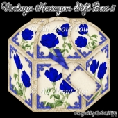 Vintage Hexagon Gift Box 5