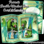 Parrots Double Window Box Card