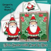 3d Tree Hanging Santa with Card and Box