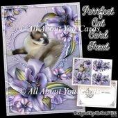 Perrfect Cat Card Front