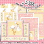 Wee Baby Girl Pop Out Stepper Card