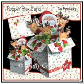 Poppin' Box Card - No Peeking