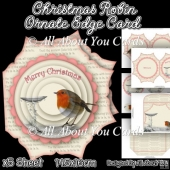 Christmas Robin Ornate Edge Card