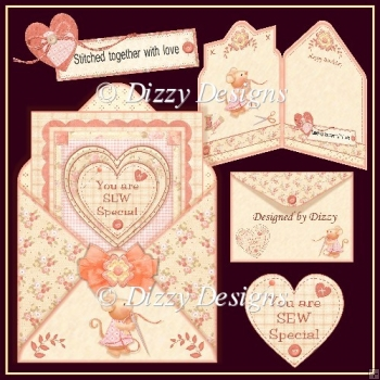 SEW Special Envy Card