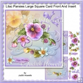 Lilac Pansies Large Square Card Front And Insert