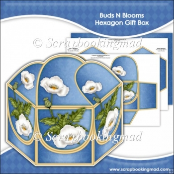 Buds N Blooms Hexagon Gift Box