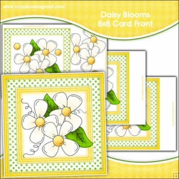 Daisy Blooms Large 8x8 Card Front