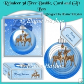 Reindeer 3d Tree Bauble with Card and Gift Box