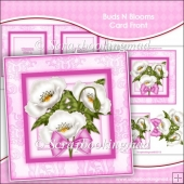 Buds N Blooms Card Front